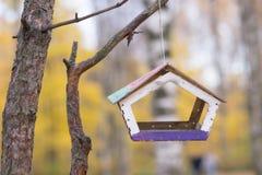 Ejecución del alimentador del pájaro en el árbol Fotos de archivo libres de regalías