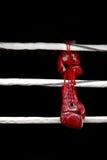 ejecución del Boxeo-guante Foto de archivo