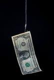 Ejecución del dinero en un gancho de pescados Fotos de archivo libres de regalías