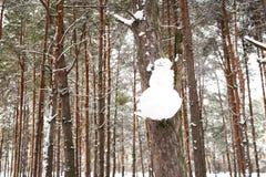 Ejecución del muñeco de nieve en una rama de árbol en el bosque, Fotografía de archivo libre de regalías