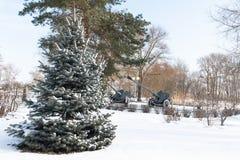 Ejecución del muñeco de nieve en una rama de árbol en el bosque, Imagen de archivo