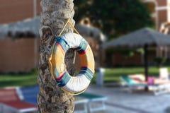 Ejecución del salvavidas en un árbol por la piscina Foto de archivo