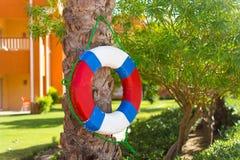 Ejecución del salvavidas en un árbol por la piscina Imágenes de archivo libres de regalías