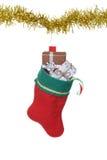 Ejecución llenada de la media de la Navidad en la guirnalda del oro fotografía de archivo libre de regalías