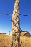 Ejecución moldeada del collar de posts de la cerca Foto de archivo