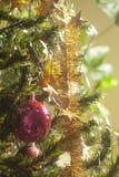 Ejecución roja de la bola de cristal en rama de árbol de navidad verde imágenes de archivo libres de regalías