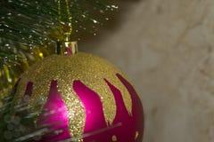 Ejecución roja de la bola de la Navidad en el árbol de navidad Imágenes de archivo libres de regalías