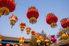 Ejecución roja de la linterna del chino tradicional en el árbol, celebrando Año Nuevo Fotografía de archivo