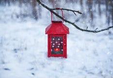 Ejecución roja de la linterna en la rama de árbol Mañana del invierno Nevado en parque imagenes de archivo