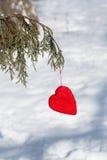 Ejecución roja del corazón del día de tarjetas del día de San Valentín en vertical del árbol de pino Imagen de archivo libre de regalías