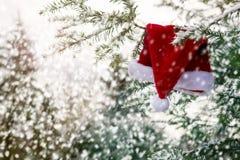 Ejecución roja del sombrero de Papá Noel en una rama en la nieve Foto de archivo libre de regalías
