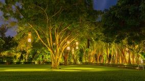 Ejecución tailandesa del estilo de las linternas del árbol a adornar Lámpara del bambú de mimbre del árbol a adornar tailandia Fotografía de archivo