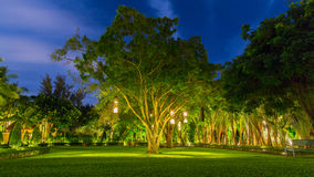Ejecución tailandesa del estilo de las linternas del árbol a adornar Lámpara del bambú de mimbre del árbol a adornar tailandia Fotos de archivo