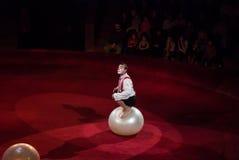 Ejecutantes de circo Imagen de archivo libre de regalías