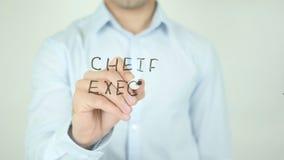 Ejecutivo Officer, CEO, escribiendo en la pantalla transparente metrajes
