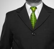 Ejecutivo verde Imagen de archivo libre de regalías