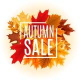 Ejemplo abstracto Autumn Sale Background del vector con caer Fotos de archivo libres de regalías