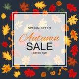 Ejemplo abstracto Autumn Sale Background del vector con caer Imagen de archivo libre de regalías
