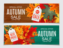 Ejemplo abstracto Autumn Sale Background del vector con caer Fotografía de archivo libre de regalías