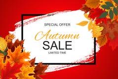 Ejemplo abstracto Autumn Sale Background del vector con Autumn Leaves que cae Imagen de archivo