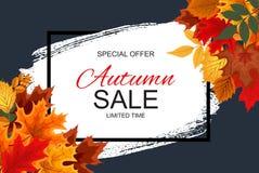 Ejemplo abstracto Autumn Sale Background del vector con Autumn Leaves que cae Imágenes de archivo libres de regalías
