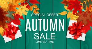 Ejemplo abstracto Autumn Sale Background del vector con Autumn Leaves que cae Fotos de archivo libres de regalías