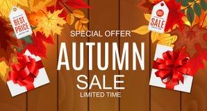 Ejemplo abstracto Autumn Sale Background del vector con Autumn Leaves que cae Fotografía de archivo libre de regalías