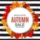 Ejemplo abstracto Autumn Sale Background del vector con Autumn Leaves que cae Foto de archivo