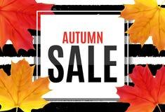 Ejemplo abstracto Autumn Sale Background del vector con Autumn Leaves que cae Imagen de archivo libre de regalías