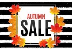 Ejemplo abstracto Autumn Sale Background del vector con Autumn Leaves que cae Foto de archivo libre de regalías