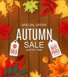 Ejemplo abstracto Autumn Sale Background del vector con otoño Imágenes de archivo libres de regalías