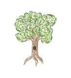 Ejemplo abstracto del árbol verde estilizado Imagen de archivo libre de regalías