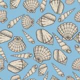 Ejemplo acuático dibujado mano del vector del garabato de la colección de la concha marina Modelo inconsútil del bosquejo ilustración del vector