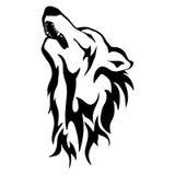 Ejemplo aislado de la cabeza del ` s del lobo Foto de archivo