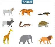 Ejemplo animal Imagenes de archivo