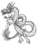 Ejemplo asiático del dragón, dibujo, grabado, tinta, línea arte, vector stock de ilustración
