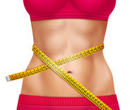 Ejemplo atlético femenino de la cintura 3D ilustración del vector