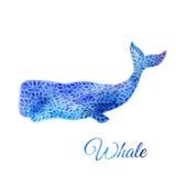 Ejemplo azul de la ballena de la acuarela ilustración del vector