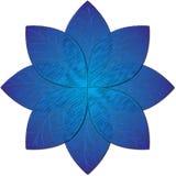 Ejemplo azul de la flor Foto de archivo libre de regalías