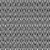 Ejemplo blanco y negro de la concha de peregrino Fotografía de archivo libre de regalías