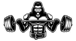 Ejemplo blanco y negro de un gorila con el barbell