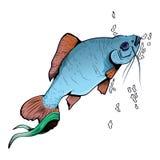Ejemplo colorido con los pescados Foto de archivo libre de regalías
