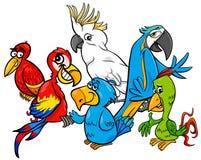 Ejemplo colorido de la historieta del grupo de los loros stock de ilustración