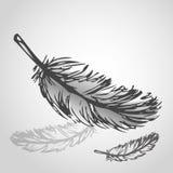 Ejemplo colorido del vector de plumas Imágenes de archivo libres de regalías
