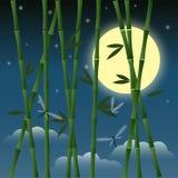 Ejemplo con el bambú y las libélulas en el fondo del cielo nocturno con la luna, las estrellas y las nubes para el uso en diseño Foto de archivo libre de regalías