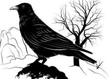 Ejemplo con el cuervo en una roca en un fondo Fotos de archivo