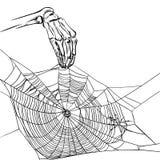 Ejemplo con la mano del web y del esqueleto Fotografía de archivo libre de regalías
