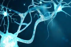 Ejemplo conceptual de las células de la neurona con los nudos del vínculo que brillan intensamente Neuronas en cerebro encendido  stock de ilustración
