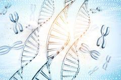 ejemplo 3d de la mol?cula de la DNA La mol?cula helicoidal de un nucle?tido en el ambiente del organismo como en espacio libre illustration