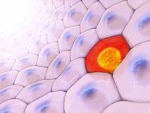 ejemplo 3d de una opinión frontal sobre modelo de la célula con en ce rojo libre illustration